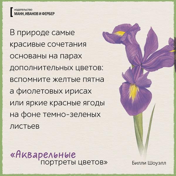 В природе самые красивые сочетания основаны на парах дополнительных цветов