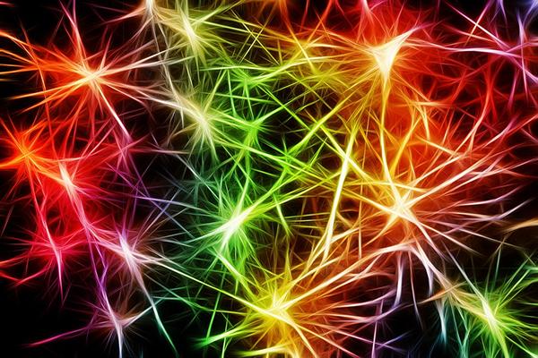 Если человек смотрит на сложную картину, его мозг мгновенно отделяет вертикальные линии от горизонтальных и сохраняет их в разных областях. То же самое происходит с цветом.