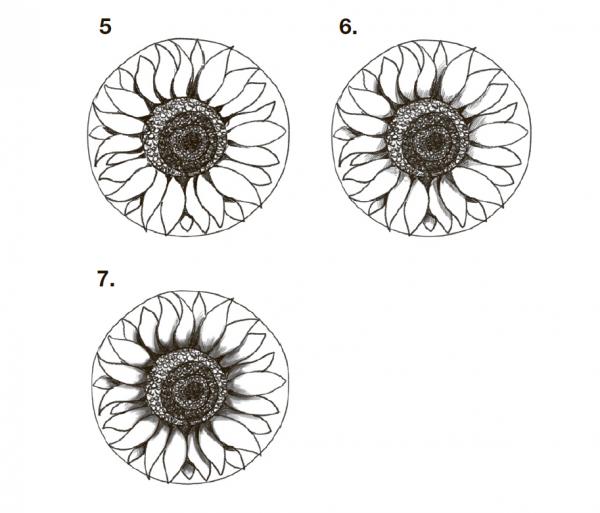 Разотрите пальцем штриховку, чтобы переход от тени к полутени получился плавным (рис. 7).
