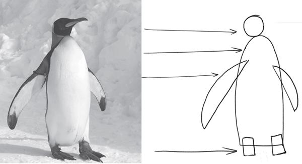Нарисовать пингвина гораздо проще, если представить его в виде набора простых геометрических фигур.