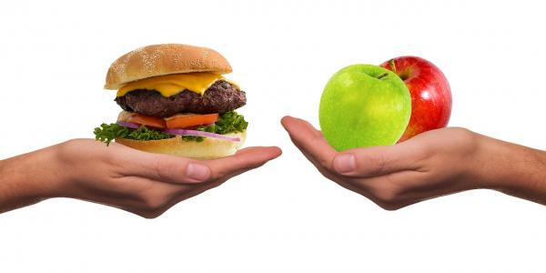 Выбор пищи оказывает огромное влияние на наше здоровье и повседневное самочувствие.