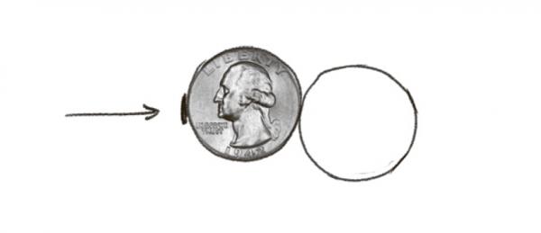 Мелочь из кармана и семенная коробка. Обведите монеты разного достоинства, чтобы нарисовать цветоложе с семенами. Поместите одну окружность внутрь другой.
