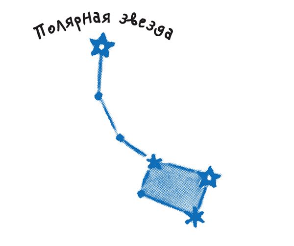 Рядом с Полярной звездой, кроме Большой Медведицы, есть и другие созвездия. Например, Малая Медведица. На конце «ручки» её «ковша» и находится Полярная звезда.