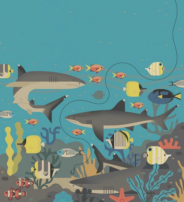 Иллюстрации Оуэна Дэйви не только красивые — они развивают эстетический вкус у маленького читателя.