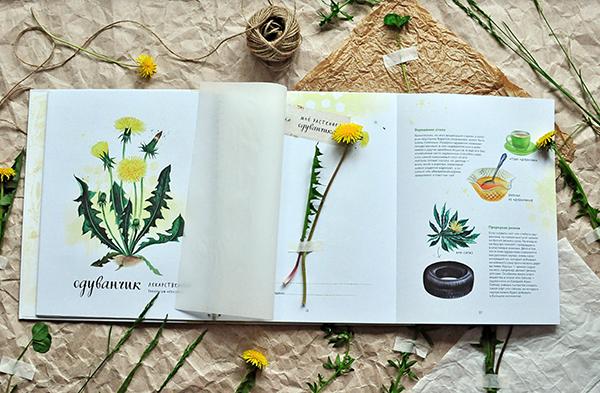 В обеих книгах серии есть специальные страницы с калькой для сбора даров природы. Листы сделаны из плотной бумаги и скреплены пружинкой, поэтому книга не деформируется. Каждое растение можно подписать — где оно найдено и когда.