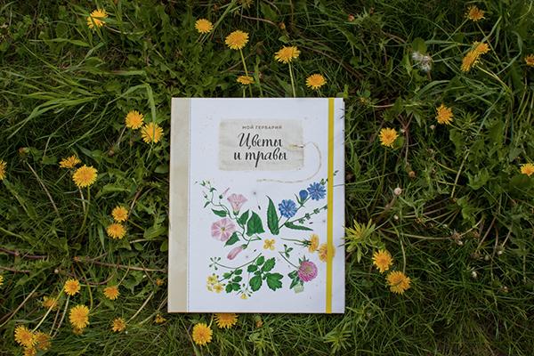 Редактор Анна Шахова поделилась своими воспоминаниями от работы с автором, художником и дизайнером.