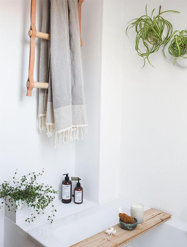 Да, в ванной тоже можно разместить растения. Некоторые из них будут совсем не против. Например, хлорофитум хохлатый, известный как растение-паук, — одно из наиболее простых комнатных растений, подходящее для любого помещения, в том числе для ванной.