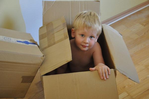 Малыш, мама (или папа, сестра, брат, бабушка, дедушка и др.) и громадная коробка — вот это приключение!