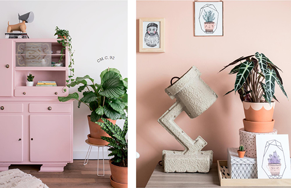 Нежно-розовый оттенок отлично сочетается с зелёным. Можно выкрасить шкафчик или стену в этот цвет, на фоне которых растения особенно выделяются.