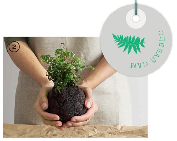 Соедините одинаковые части компоста и почвы в ведре, добавив немного воды, чтобы скрепить всё вместе. Слепите из смеси шар, достаточно большой, чтобы вместить корни растения. В процессе вам нужно будет выдавить влагу из почвы.