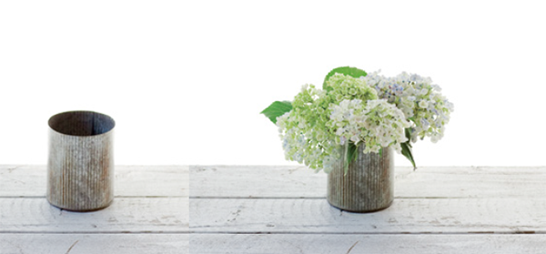 2. Подрежьте стебли гортензий по высоте вазы. Пышные соцветия должны закрыть край. Обмакните срезы в жженые квасцы и поставьте цветы в вазу.