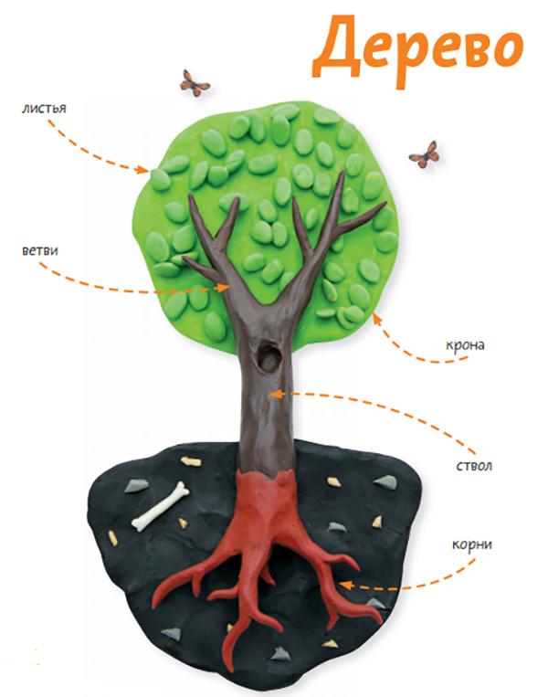 Деревья выделяют кислород, которым мы дышим, и дают плоды, которые мы употребляем в пищу. Древесину используют в самых разных областях — от строительства кораблей и жилищ до изготовления музыкальных инструментов и лекарств.