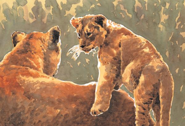 Хотя некоторые детеныши напоминают уменьшенную версию своих родителей, отдельные части тела у них все же имеют другие пропорции. Например, у молодых жеребят очень длинные ноги, из-за которых они выглядят нескладными. У котят очень крупные уши относительно головы, а у щенков большие лапы.