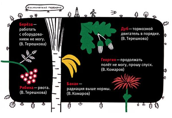 Во время первых полётов космонавты общались с «Землёй» с помощью секретных слов, чтобы никто не мог догадаться, как всё проходит. Такими словами служили названия цветов, фруктов и деревьев (для каждого полёта их меняли). Розы, бананы и дубы получили новые значения.