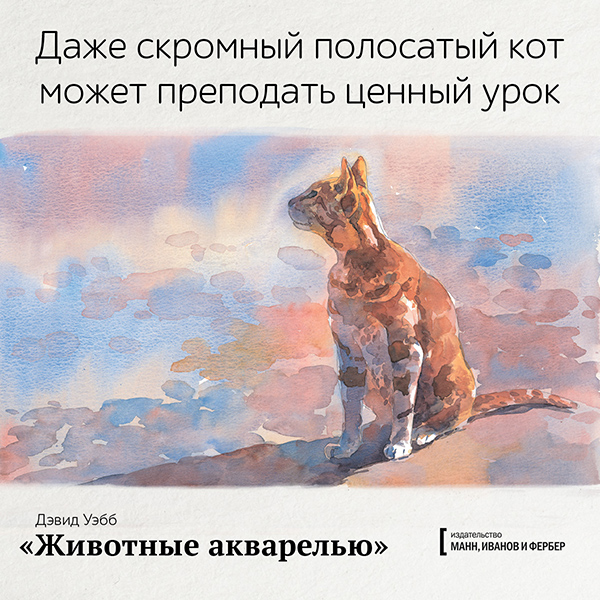 Даже скромный полосатый кот может преподать ценный урок