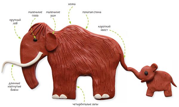 Мамонт — род млекопитающих из семейства слоновых