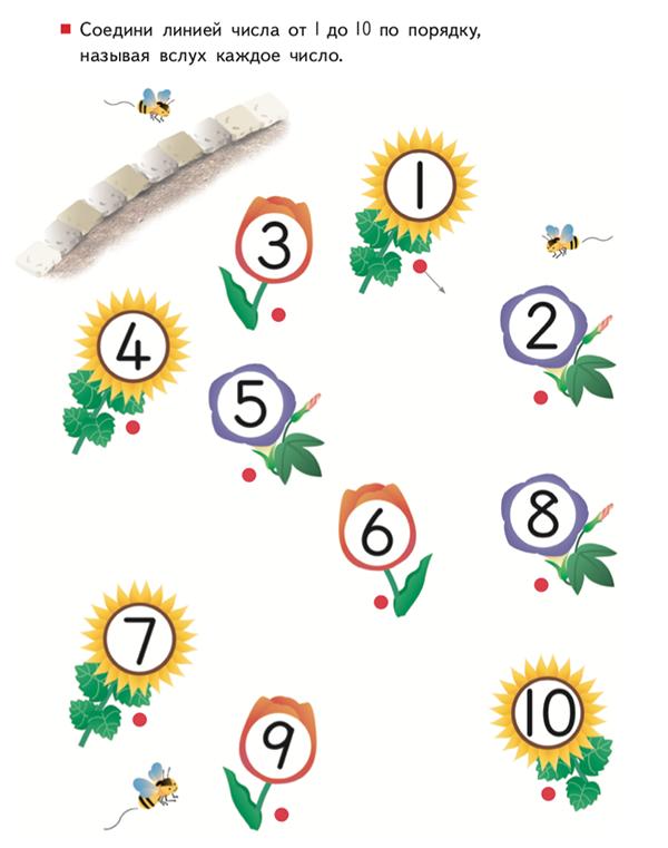 С основами математики познакомят тетради «Учимся считать от 1 до 30» и «от 1 до 120».