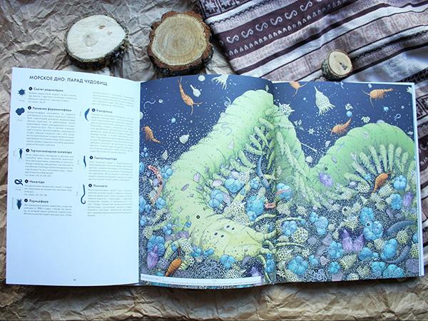 А эта книга про мир, который повсюду — мир микроскопических существ, которые поддерживают природное равновесие.