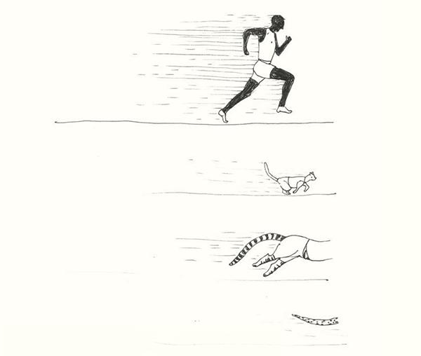 Домашняя кошка бегает быстрее, чем легкоатлет