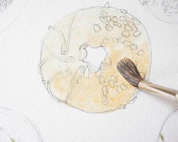 Закрасьте первый пончик песочным, используя большую кисть и добавляя много воды