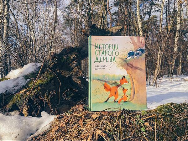 Нежные акварельные рисунки, краски нетронутого леса, атмосфера повседневного чуда и знакомые каждому ситуации